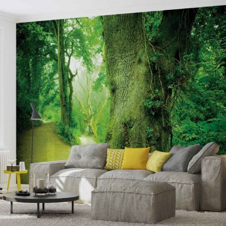 Non-woven Nature wallpaper mural Forest 290